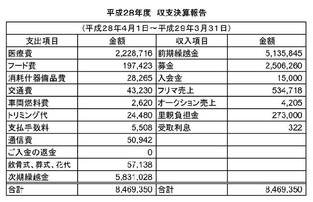 平成28年度 収支決算報告(アライ)_01