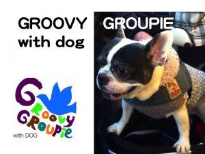 34-GROOVY GROUPIE with dog