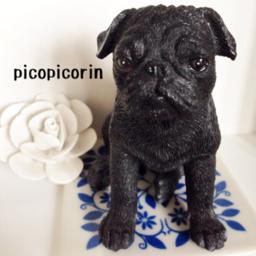 picopicorin